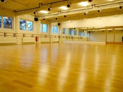 Trend Move Specials, Tanzworkshops & Pädagogenseminare - dance institute hamburg - Gina Workshops